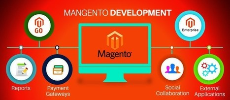 Benefits Of Hiring A Professional Magento Development | Magento Developers | Scoop.it