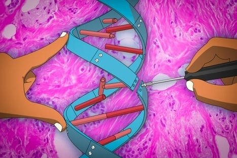 New anti-cancer gene therapy technique targets microRNAs for the first time | Amazing Science | Scoop.it