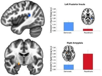 Red brain, blue brain: Republicans and Democrats process risk differently, research finds | Bounded Rationality and Beyond | Scoop.it