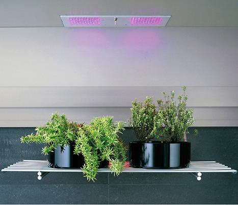 Integrated Indoor Edible and Ornamental Indoor Gardens at Eurocucina | Annie Haven | Haven Brand | Scoop.it