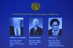 #Nobel prize in medicine goes to pioneers in parasitic diseases, sarcasm #banksters #politicians #science | Limitless learning Universe | Scoop.it