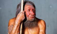 Study casts doubt on human-Neanderthal interbreeding theory | Histoire - Antiquité | Scoop.it