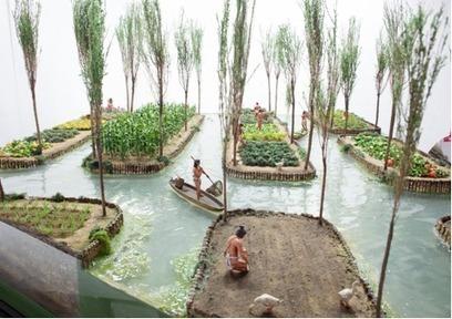 Aztecs: Gardens in the lake | Te Papa | Kiosque du monde : Amériques | Scoop.it