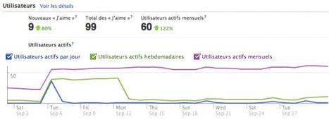 Facebook Insights : Le Guide Complet Pour Bien Débuter | Time to Learn | Scoop.it