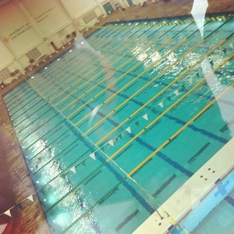 Dear Summer, I'm going to swim one of the largest pools in North America | Swim | Scoop.it