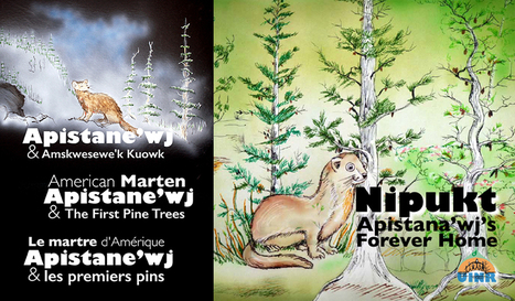 New Book and Video on Marten and the Forest | Unama'ki Institute of Natural Resources | AboriginalLinks LiensAutochtones | Scoop.it