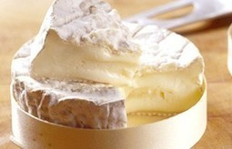 Les camemberts AOP s'attaquent aux industriels | The Voice of Cheese | Scoop.it
