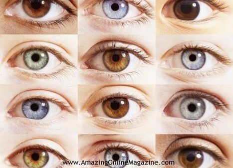 Read  Your Personality in Your Eye   Amazing Online Magazine   Scoop.it