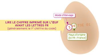 Code, code, codette ? Comment choisir le bon oeuf ? | Finis ton assiette | Scoop.it