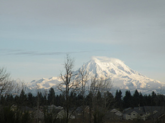 Off Post Fort Lewis Housing Options Spring Preview Weekend in Yelm! | New Homes Near JBLM - Military Housing, Decor and Lifestyle | Scoop.it