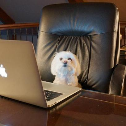 40 Digital Media Resources You May Have Missed | Digital Culture: Online Communication | Scoop.it