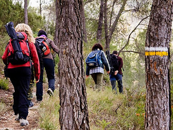 Aragón aspira a tener una única marca de senderismo | Vallée d'Aure - Pyrénées | Scoop.it