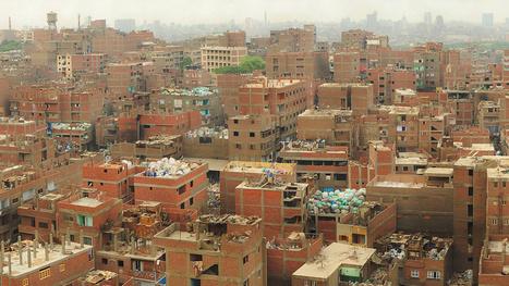 The Weirdest Urban Ecosystems On Earth | Strange days indeed... | Scoop.it