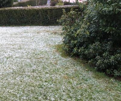 Rostrenen (22). Il neige ce jeudi matin en Centre-Bretagne - Rostrenen - Météo - ouest-france.fr   Ma Bretagne   Scoop.it