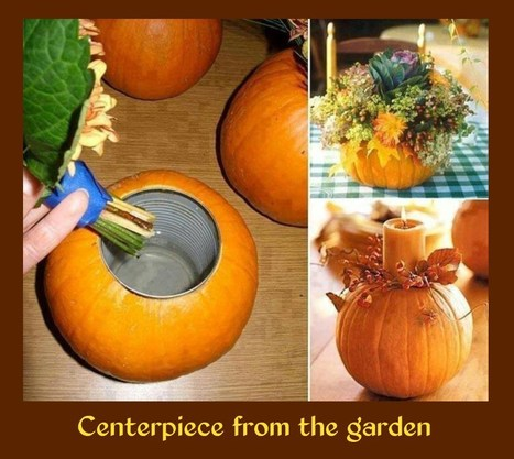 Centerpiece from the garden | RV Camping and Outdoor Fun | Scoop.it