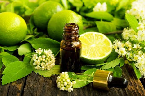 5 Charismatic Essential Oils and Their Superb Therapeutic Benefits | Natures Natural India - Bulk Essential oils Manufacturer and Suppliers | Scoop.it