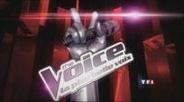 The Voice Saison 2 sur TF1 : Qui va reprendre ? [MAJ 10/9]   Docu-Réalité   Scoop.it