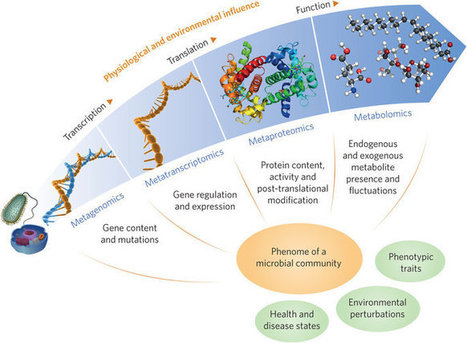 A multi-omic future for microbiome studies | MycorWeb Plant-Microbe Interactions | Scoop.it