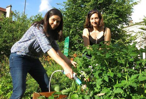 Elles lancent leur potager libre-service | Jardin écologique | Scoop.it