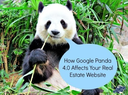 How Google Panda 4.0 Affects Your Real Estate Website | Real Estate | Scoop.it