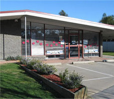 Mooroopna Vet Clinic - Tatura Vet, Shepparton Vet | Veterinary Clinic | Scoop.it