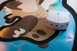 NetPublic » Robots et code pour les enfants : 25 fiches pour mettre en place des activités pédagogiques | Programmation à l'Ecole - Mondes virtuels - Jeux sérieux | Scoop.it