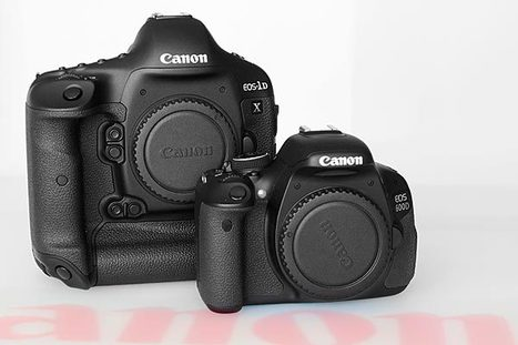 EOS 1DX versus EOS 600D: which is best for you? | Pixiq | DSLR video and Photography | Scoop.it