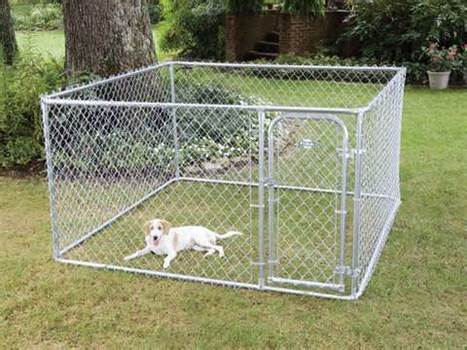 An Alarming Fence System for Escaping Dog | Dog Fence | Scoop.it