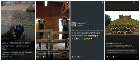 You Can Finally Make Your Own Twitter Moments - Here's How | Top Social Media Tools | Scoop.it