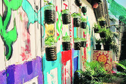 Farming in the concrete jungle - Indian Express | Vertical Farm - Food Factory | Scoop.it