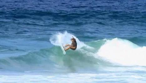 Insight's Rangi Ormond In Oz | Surfing Magazine | Scoop.it