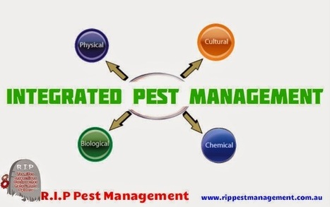What Is Meant by Integrated Pest Management? | R.I.P. Pest Management | Pest Exterminator Northern Beaches | Scoop.it
