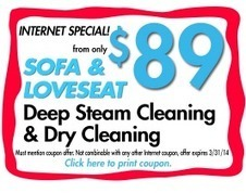 Upholstery Cleaning Fort Lauderdale | thedrysteam | Scoop.it
