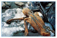 » Iceman Otzi Killed by an Arrow | Ancient History- New Horizons | Scoop.it