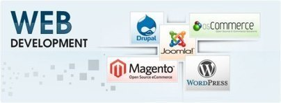 Choosing a Professional Web Development Company For Growth Your Business | Red Logics | Scoop.it
