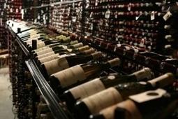 Top Sommeliers' Tips On Wine To Buy Now | Vitabella Wine Daily Gossip | Scoop.it