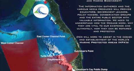The Architecture of a Financially Sustainable Marine Protected Area - The Daily Catch | Coral reef ecosystems resilience | Scoop.it