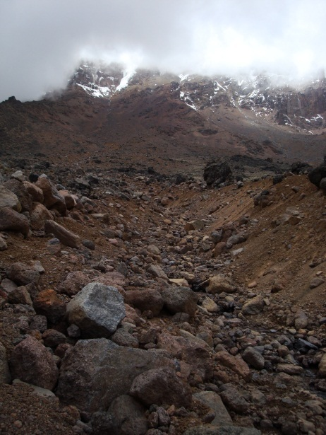 Climate Change At Kili | The Energy Collective | adapting to climate change | Scoop.it