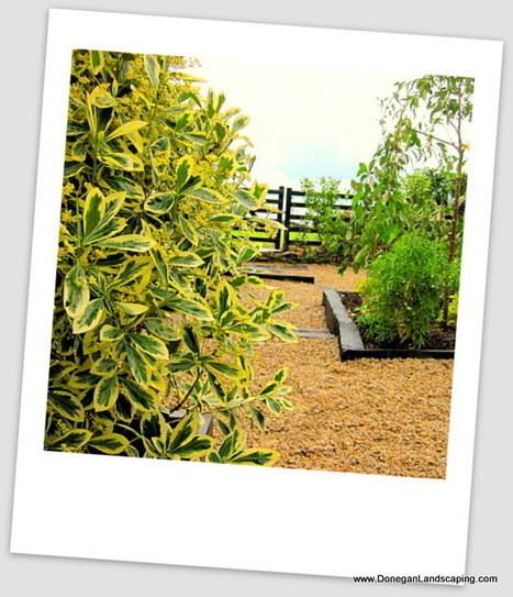 Dublin Landscaping: Coastal Garden | landscaping dublin | Scoop.it