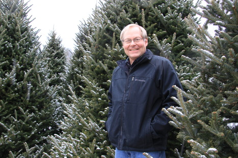 N.C. Christmas trees find new markets in Latin America | In the Field | North Carolina Agriculture | Scoop.it