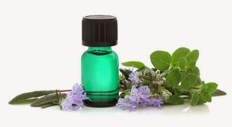 Some Oregano Oil Benefits | Agro Products | Scoop.it