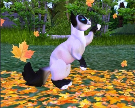 OpenSim Breedable Cats Grid | 3D Virtual-Real Worlds: Ed Tech | Scoop.it