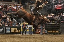 This Ain't No Bull: Nary a Cowboy Can Ride 'Em These Days | Colorado Rodeo | Scoop.it