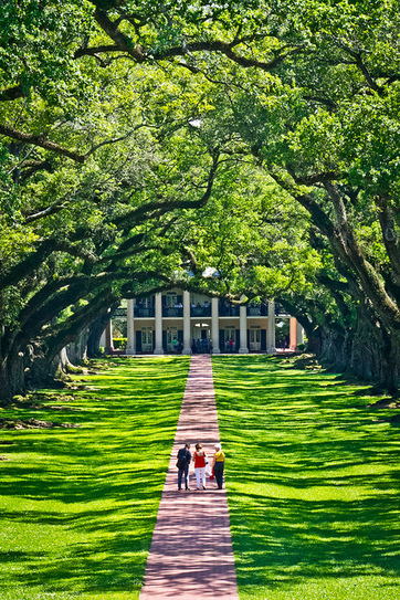 Oak Alley | Oak Alley Plantation: Things to see! | Scoop.it