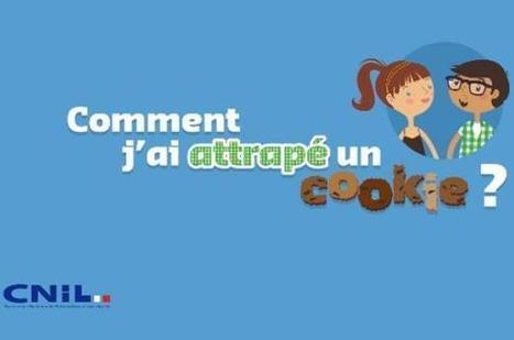 Pas de cookies publicitaires sans accord des internautes, plaide la Cnil | DigitPharma | Scoop.it