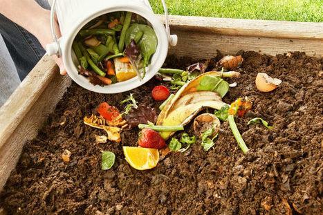 ¿Quieres hacer compost en casa? Aprende cómo en este corto video | Transición | Scoop.it