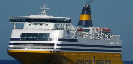 En 2013 : Plus de 700 cétacés observés par les bâteaux de la Corsica Ferries en Méditerranée | sncm | Scoop.it