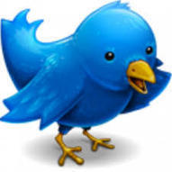 What Are Twitter Cards? | Social Media Today | Digital-News on Scoop.it today | Scoop.it