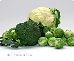 The amazing health benefits of Brussels sprouts | Plant Based Nutrition | Scoop.it