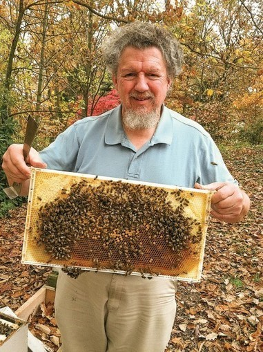 Bay Journal - Article: Maryland passes restriction on pesticide implicated in bee declines | Suburban Land Trusts | Scoop.it